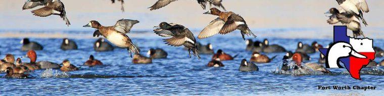 2019 Spring Gun Bash | Fort Worth Ducks Unlimited